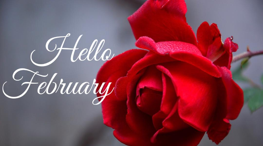 Amy's Day Spa February Newsletter